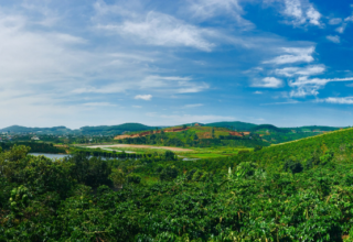 المناطق السياحية في دالات فيتنام