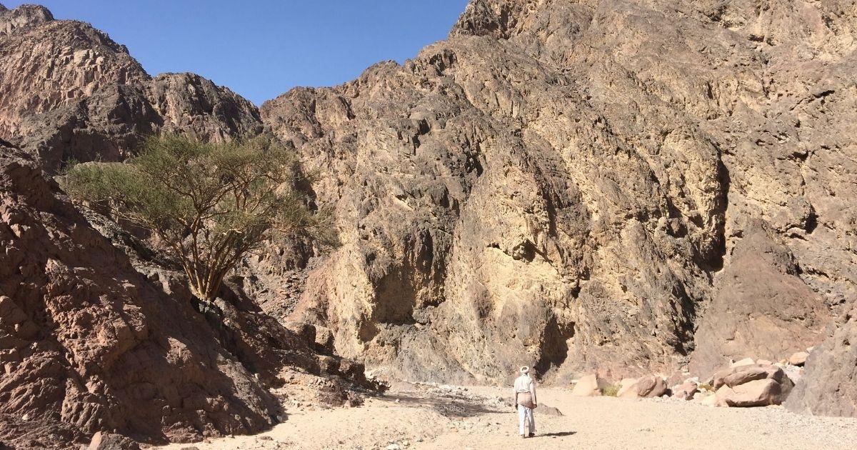 وادي الواشواشي نويبع سيناء مصر