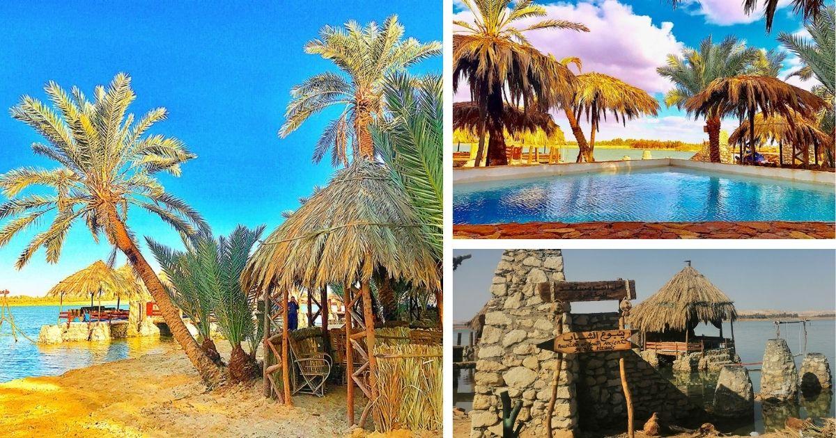 مخيم مراسينا سيوة في جزيرة فطناس على الطراز البيئي