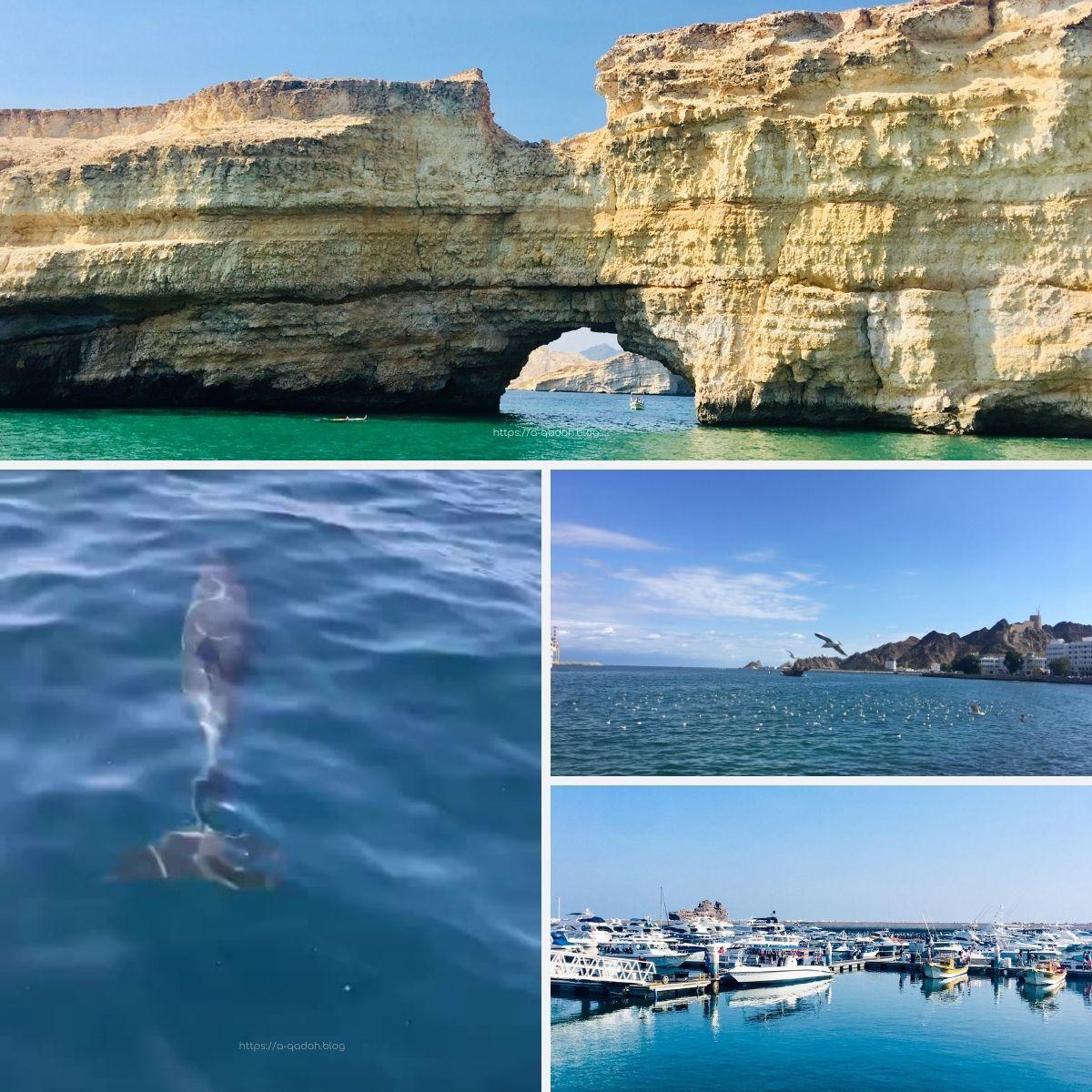 الرحلات البحرية في سلطنة عمان